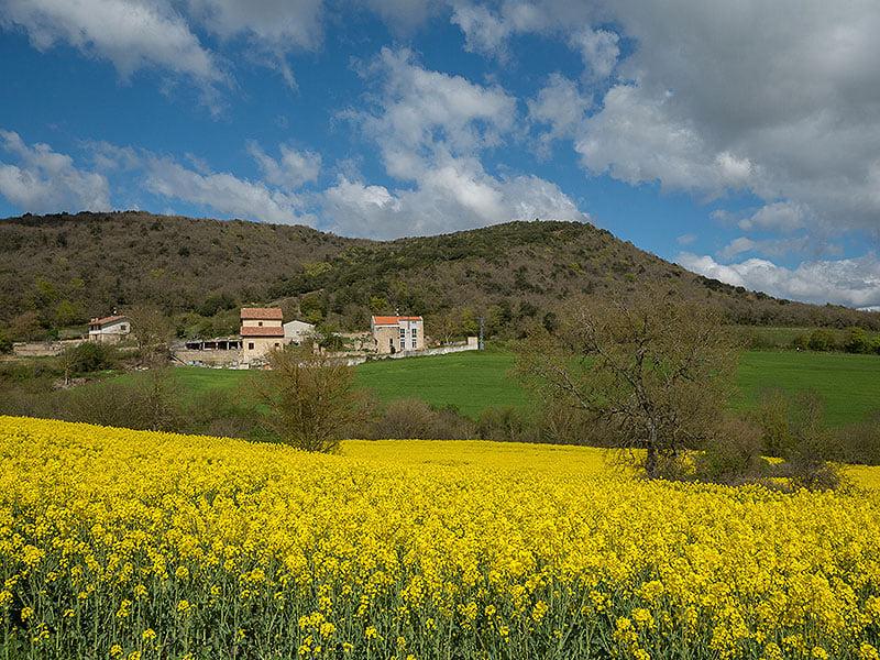 Vitoria. Monte Eskibel ∆ 814 m.