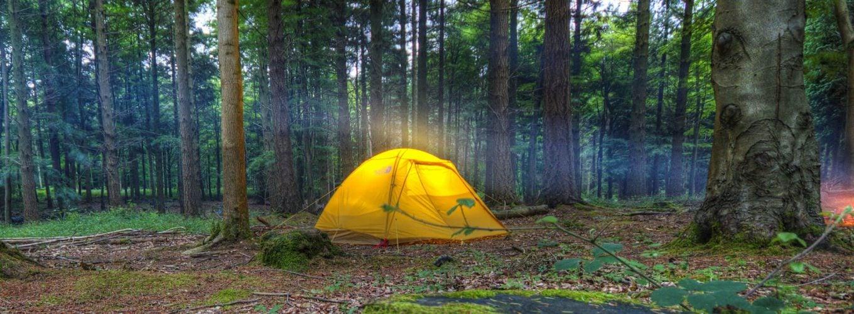 ¿Dónde puedo hacer acampada libre este verano?